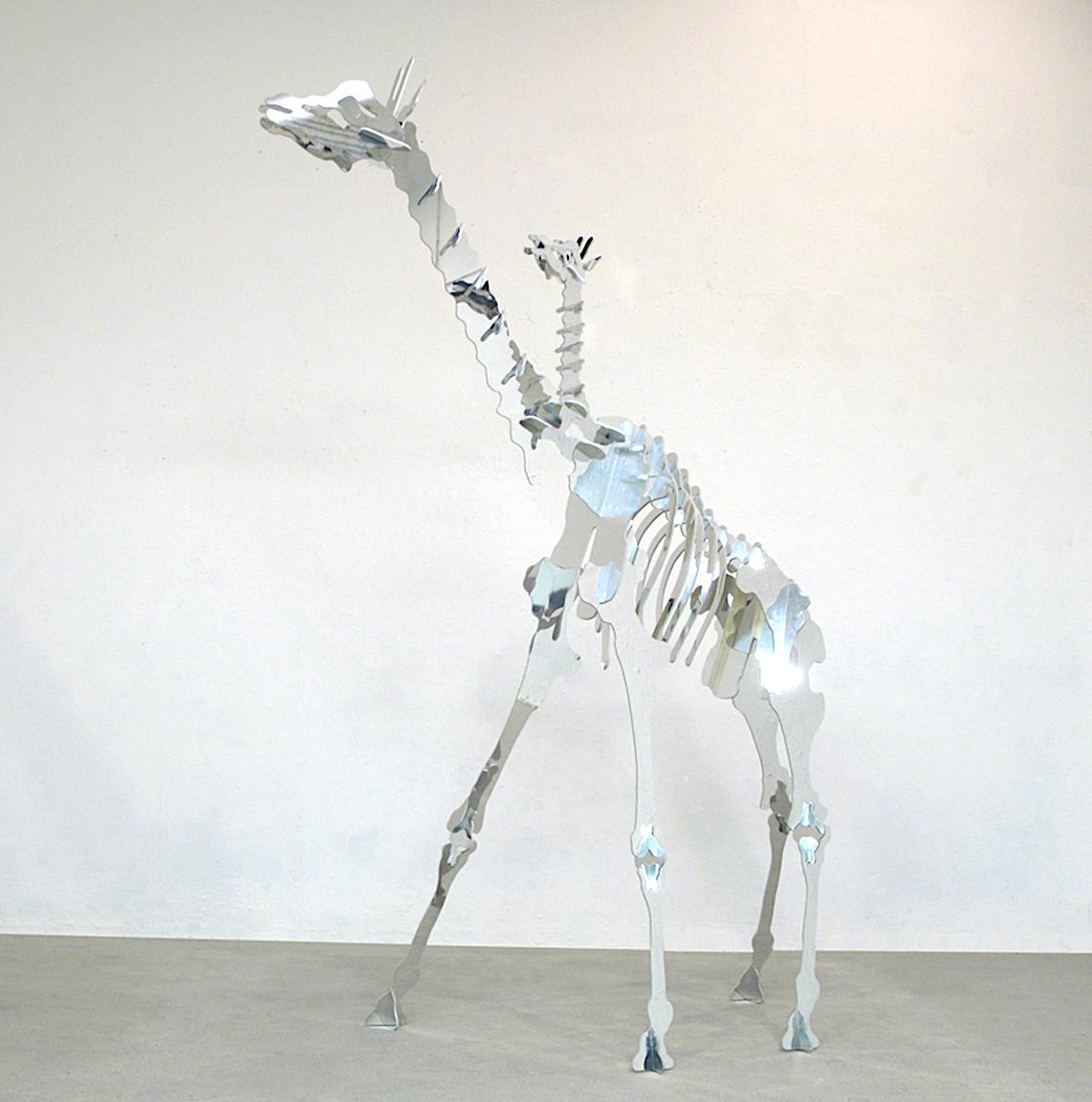 Nicolas Touron Giraffe